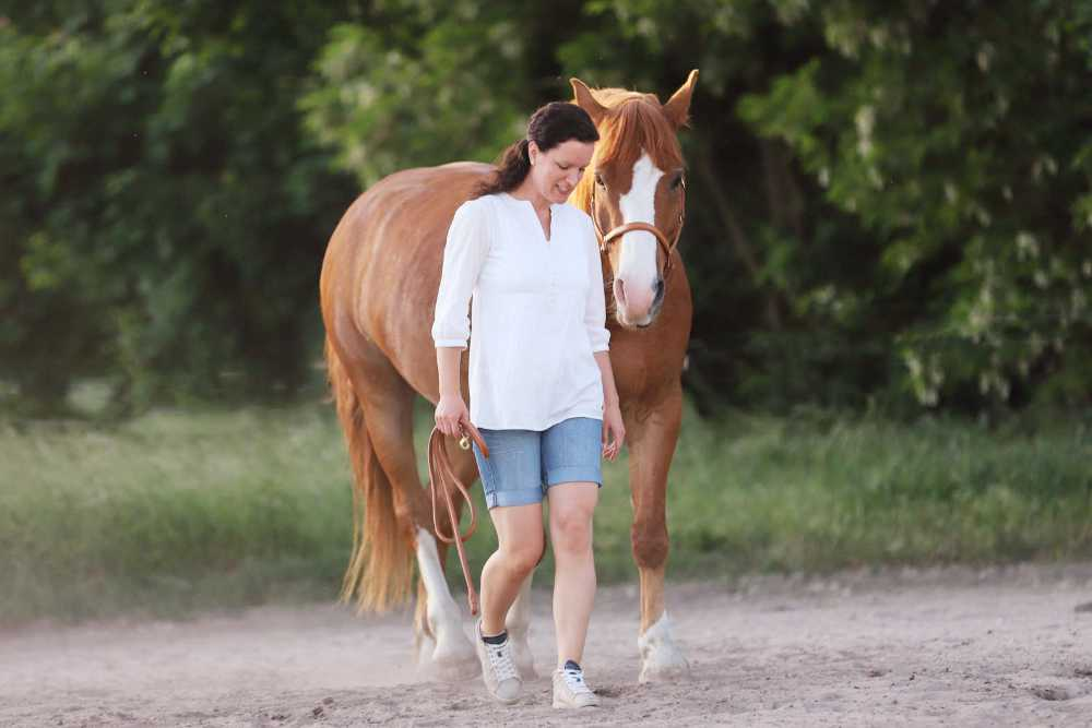 Pferd_am_Mensch_Bodenarbeit