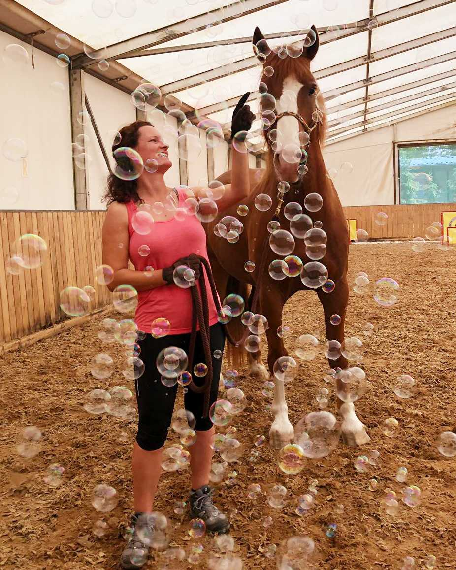 Pferd_am_Mensch_Horse_Agility_Training